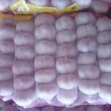 2016 New Crop Fresh Alho Branco Normal