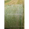 Heno ensilaje bala netwrap para la agricultura