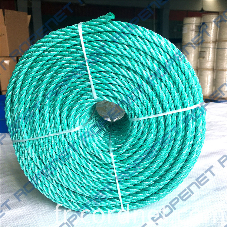 Pp Danline Rope 6mm 110m 19