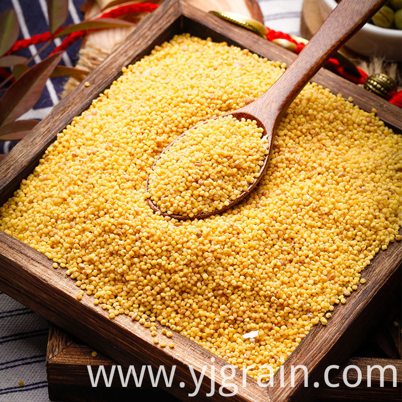Rhubarb rice