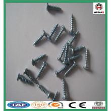 Tornillo / tornillos de panel de yeso rectificados / tornillo de tablero de yeso galvanizado