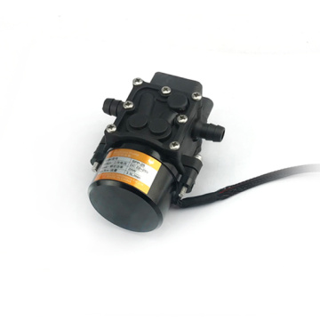 Pompe à eau Pesticide Brushless Pump