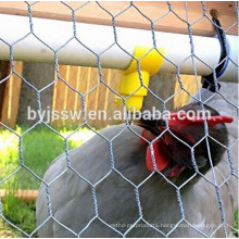Hexagonal Poultry Wire Netting For Chickken and Rabbits