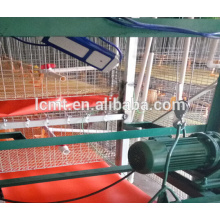 equipamento automático para galinheiro