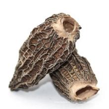 Naturel Bio Morchella Esculenta