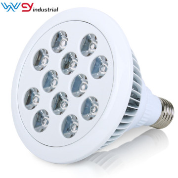 PDT 460nm-470nm 24W lâmpada de terapia LED azul