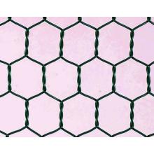 Edelstahldraht / Kohlenstoff-Hexagonal-Maschendraht