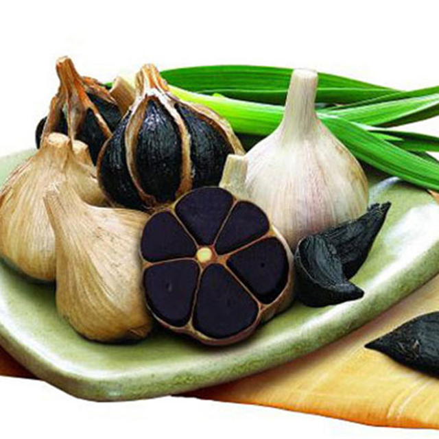 Multi Black Garlic 013