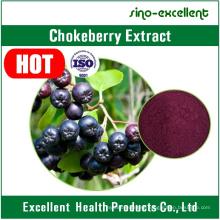 Chokeberry Extract/Aronia Extract