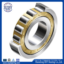 Stainless Steel/ Chrome Steel Cylindrical Roller Bearing with Cage