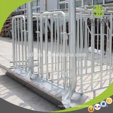 Hot Dip Galvanzied Gestation Stall Crate For Livestock Pig Farming Equipment