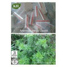 Artemisinin 63968-64-9 98% Powder Artemisia Annua Extract Antimalarial