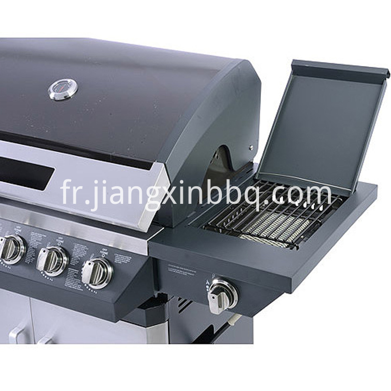 5 Burners Propane Gas Bbq Grill Side Burner View