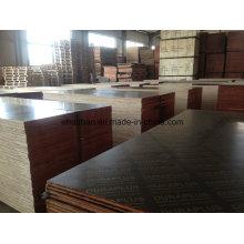 Encofrado de madera contrachapada Wlar Pegamento WBP para usos de construcción
