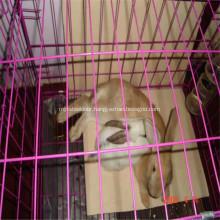 Wire Mesh Rabbit / Chicken Metal Cage