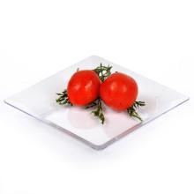 PS / PP одноразовая пластиковая посуда для столовых пластиковых подносов