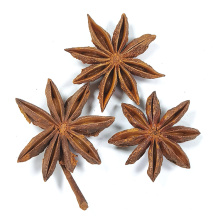 2021 China Trending Product High Quality Spice Non-Sulfur Star Anise Lllicium Verum For Sale