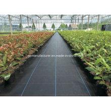 ПП ткань управлением Засорителя тканые геотекстиль используется для блокирования сорняков