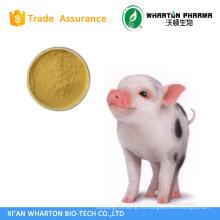 GMP Factory supply mejor calidad y precio más bajo Pig Bile Powder