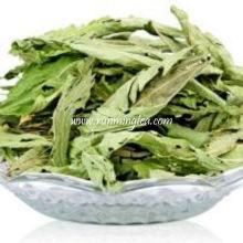 Stevia séchée