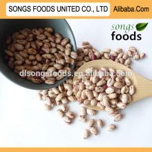 продукцию легкой фасоль вы можете импортировать из Китая