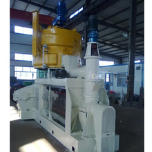 YZY202 260 whole - day oil expeller press machinery