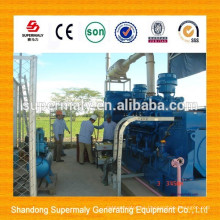 Energía verde 10-1000KW de bajo consumo y instalación en sitio Generador de biogás