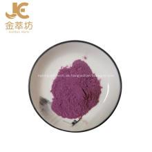 Hochwertiges natürliches pflanzliches Blaubeerfruchtsaftpulver