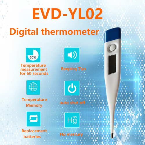 Portable Electronic Thermometer
