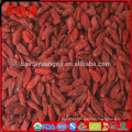 wholesales goji pianta goji berry seeds benefits of goji berries with in free samples