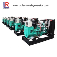 25kVA Natural Gas Generator Set