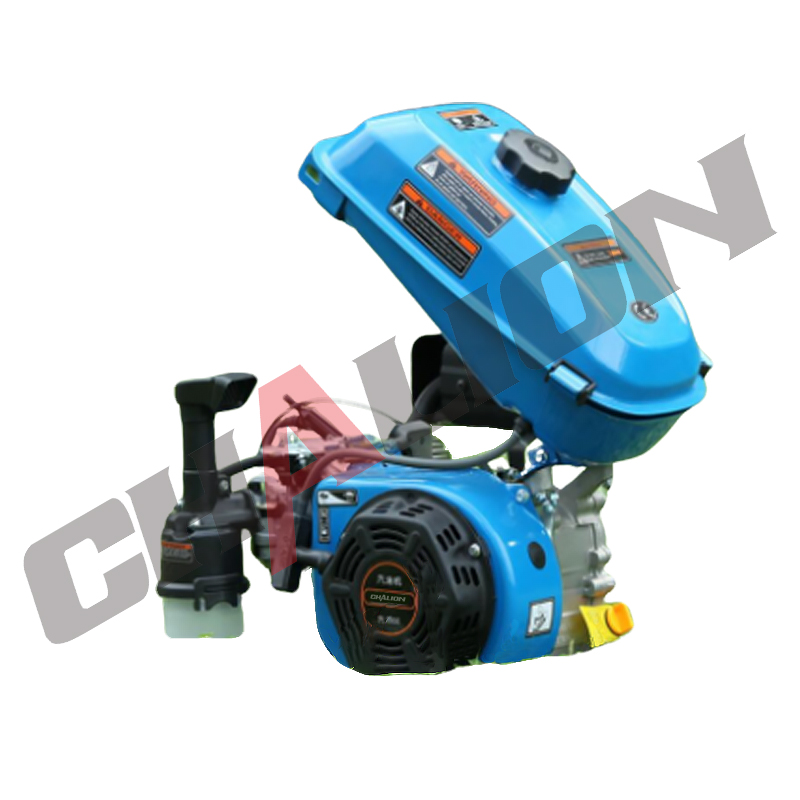 Small Portable Gasoline Engine