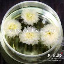 Blooming Chrysanthemum flower tea for body health and beauty