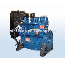Weifang Ricardo Fabrikpreis 495 Dieselmotor