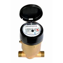 Volumetric Piston Plastic Water Meter (PD-SDC-H-LXHT-8+1)