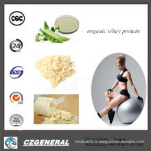 Poudre de protéine de lactalbumine de supplément de nutrition en gros standard organique d'or