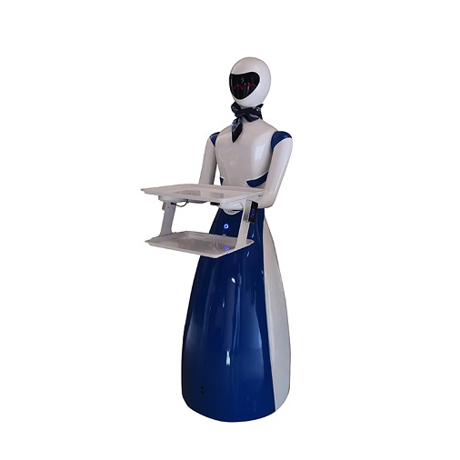 Waiter Robot Delivery Food and Drink for Cafe