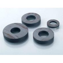 Permanent Ceramic Motor Magnet