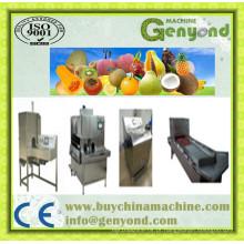 Máquinas de corte de frutas para venda na China