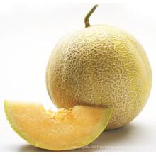 HSM13 Erding rodada sementes de melão doce híbrido amarelo dourado F1