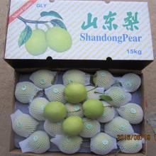 Proveedor de oro de pera fresca de Shandong