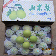 Exportation de poires Shandong fraîches en Inde dans un carton de 15 kg