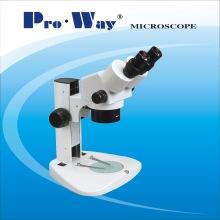 Zoom Stereo Microscope (LBX-W)