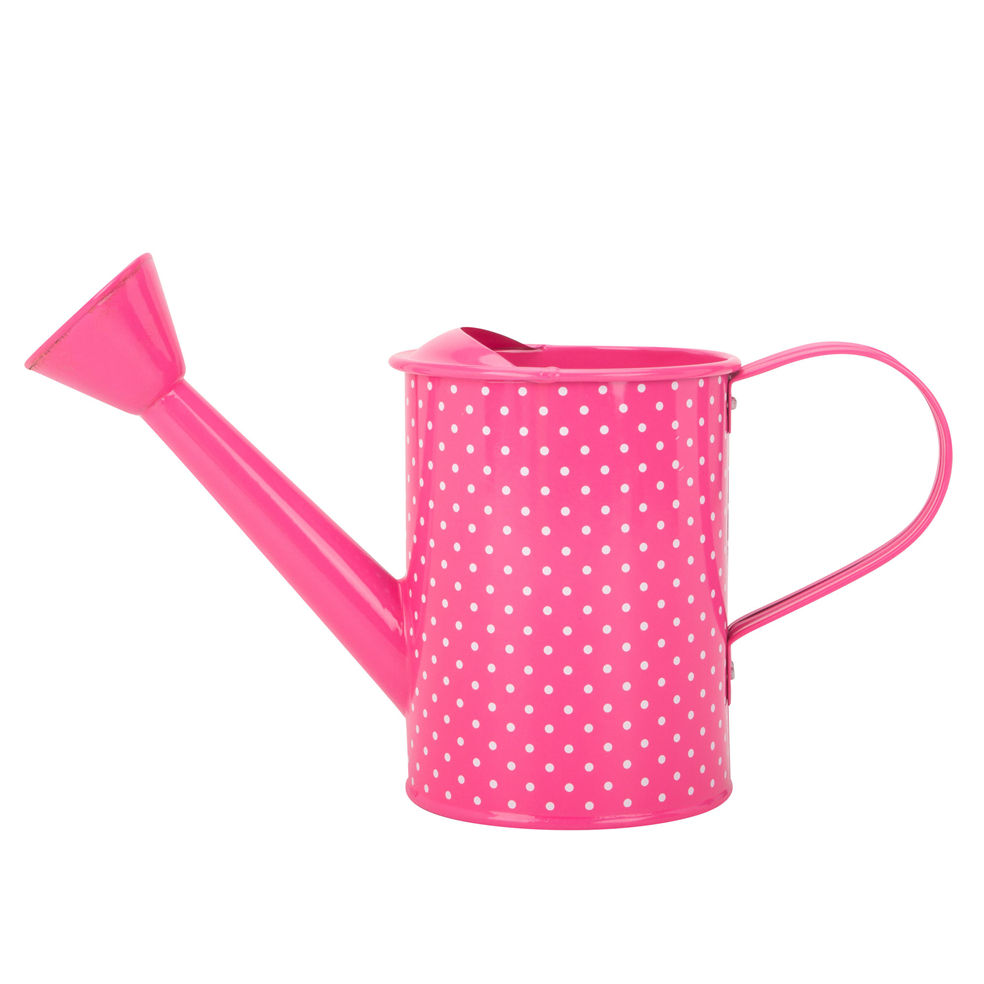 Watering Can With Long Spout