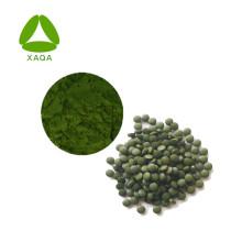 Natürliche Nahrungsergänzungsmittel Chlorella-Extrakt-Pulver