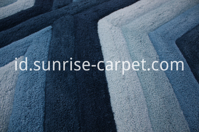 Microfiber Rug Carpet with 3D Design