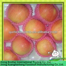 Maçã vermelha proteínas ricas, maçã de alta nutrição