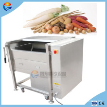 500kg/H Industrial Commercial Fruit and Vegetable Brush Washer