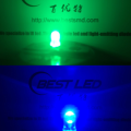 Ultra-ljus Dual Color LED 5mm blågrön gemensam anod