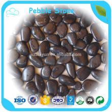 Pebbles Stone For Garden Stone